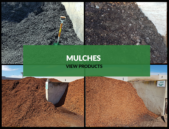 MULCHES.JPG